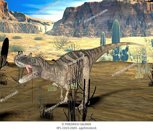 Ceratosaurus dinosaur. Computer illustration of a Ceratosaurus sp. dinosaur in a prehistoric landscape. This large carnivorous theropod dinosaur lived during...