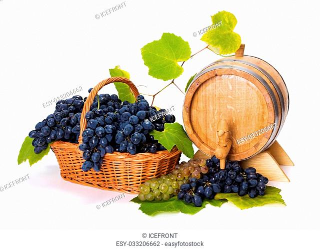 White and blue grape harvest in basket with barrel and leaves