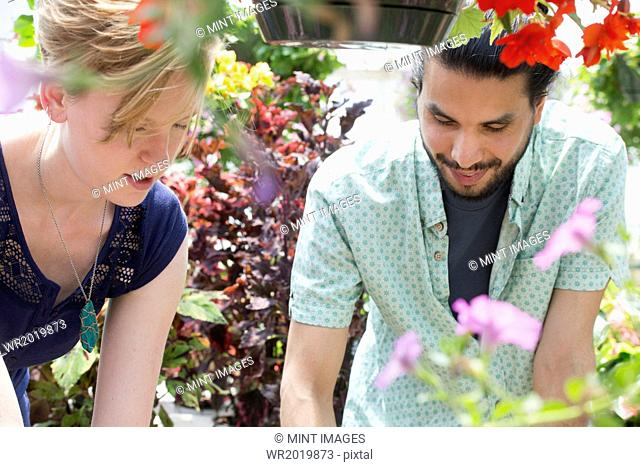 A man and woman in a garden centre, both looking down