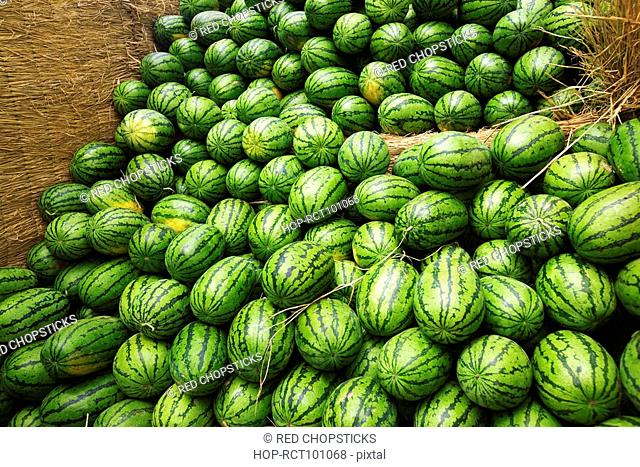 Heap of watermelons, Zhigou, Shandong Province, China