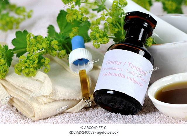 Lady's Mantle tincture / Alchemilla vulgaris