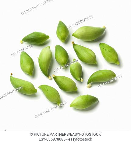 Organic green heirloom wild cucumbers on white background
