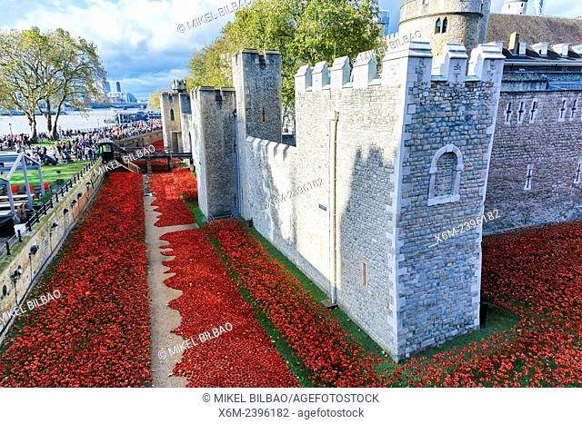 Blood Swept Lands and Seas of Red in the Tower of London. London. Great Britain, Europe