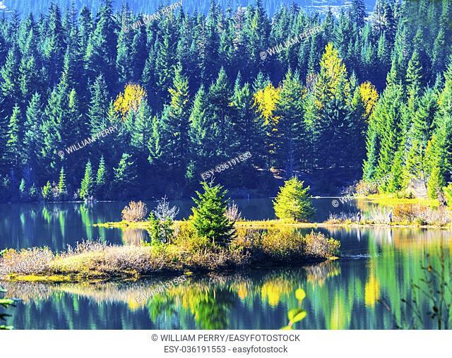 Green Yellow Island Reflection Gold Lake Reflection Autumn Fall Snoqualme Pass. Wenatchee National Forest Wilderness. Washington