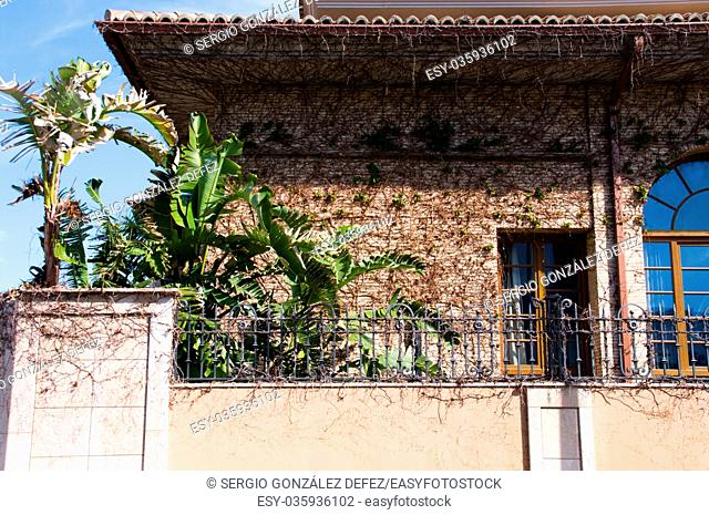 House fills of climbing plants for his front. Location of the image in almussafes populate of Valencia in Spain