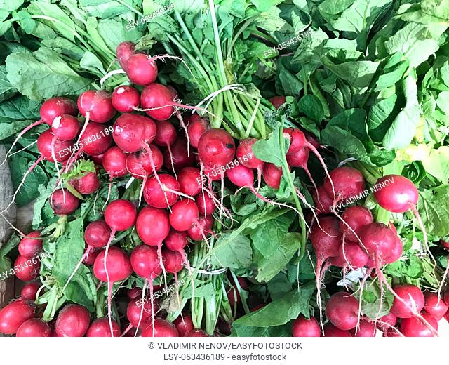 Fresh Red Radishes Exposed For Sale In Supermarket