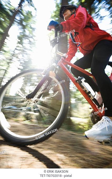Biker in the woods