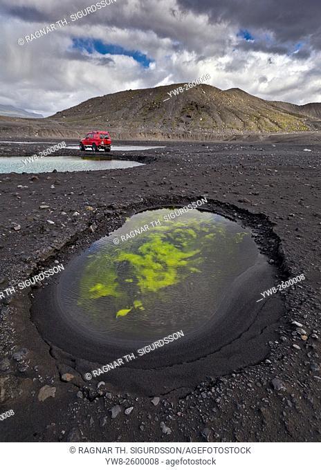 Algae in ponds by Gigjokull- outlet glacier from Eyjafjallajokull Ice Cap. Months after the Eyjafjallajokull eruption the landscape is transformed