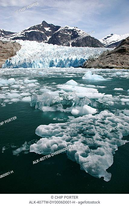 Ice flow in LeConte Bay after a huge calving off of LeConte Glacier, Southeast, Alaska