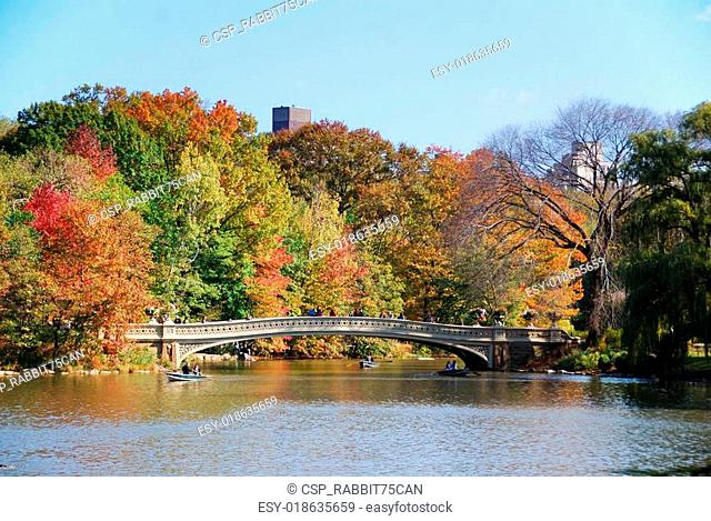 New York City Central Park Rainbow Bridge