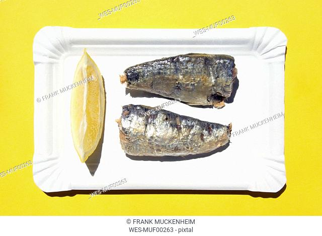 Herring on paper plate, elevated view