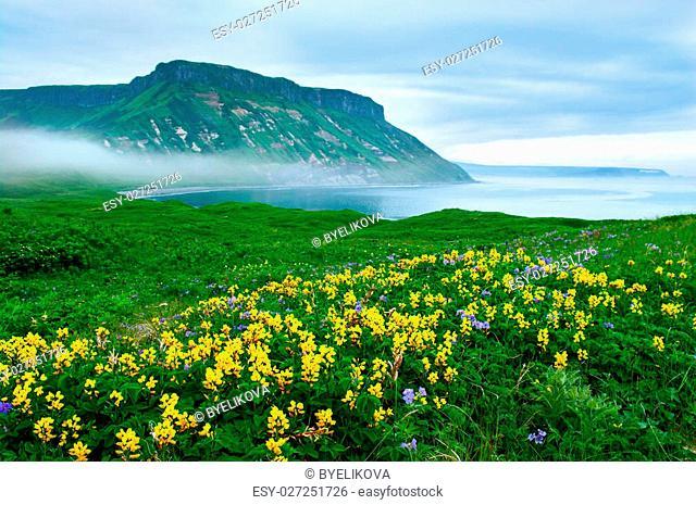 landscape at Paramushir Island, Kuril Islands, Russia