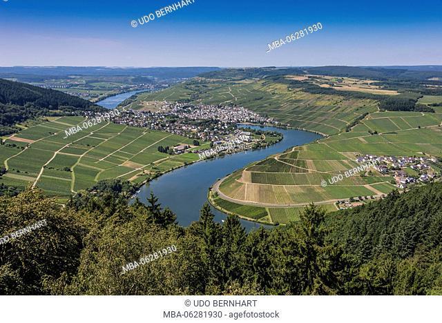 Europe, Germany, Rhineland-Palatinate, district Trier-Saarburg, the Moselle, Mittelmosel, roman wine road, Moselle loop of the 5-sea view with Mehring