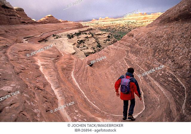USA, United States of America, Utah: hiking, Canyonlands National Park