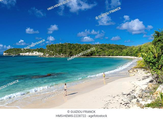 France, Guadeloupe (French West Indies), Marie Galante, Saint Louis, Anse de Mays, Pointe Fleur d'Epee cliffs in the background