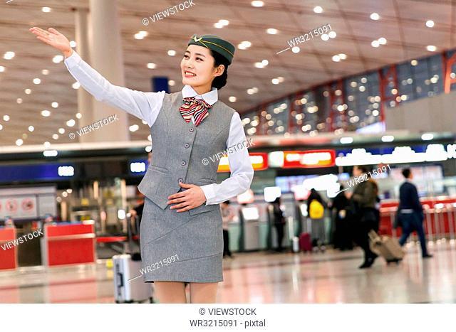 Young female flight attendants