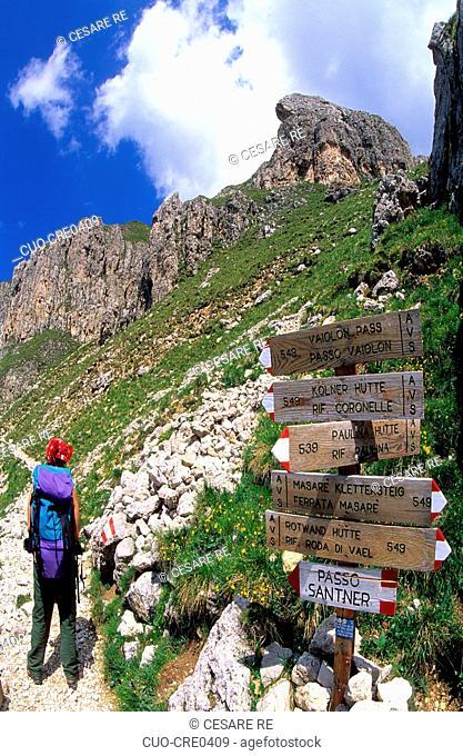 Trekking in Catinaccio group, near Carezza Pass, Trentino, Trento province, Italy