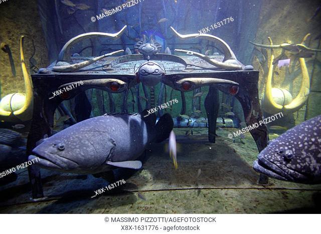 Aquarium and underwater Zoo at Atlantis Palm, Jumeira, Dubai, United Arab Emirates