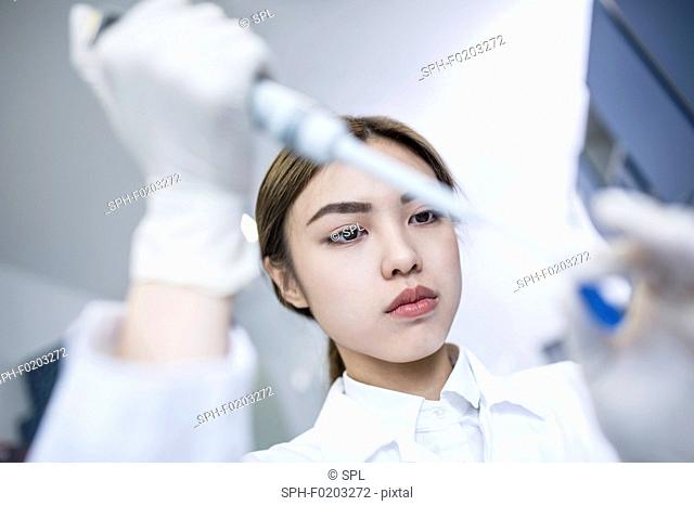 Female lab assistant using pipette