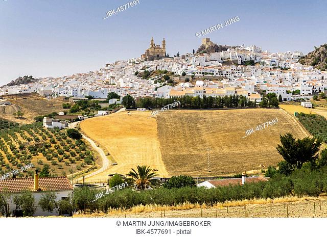 White village with church of La Encarnación, and Moorish castle, Olvera, province of Cadiz, Andalusia, Spain
