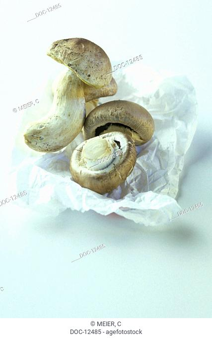 Ceps - Boletus edulis - are fat and calorie-poor enthaelten indispensable amino acids vitamin D B2 folic acid niacin pantothenic acid and Biotin - copper and...