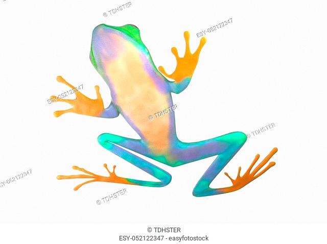 red eyed tree frog from tropical rainforest of Costa Rica isolated on white. Beautiful green and blue treefrog is an exotic animal from the rain forest