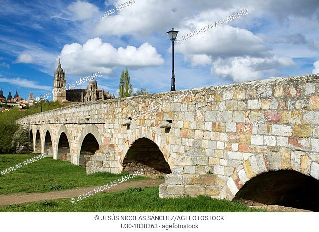 Overview of the cathedrals of Salamanca from Roman Bridge over the Tormes river  Salamanca  Castilla y Leon  Spain