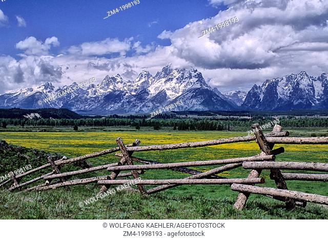 USA, WYOMING, GRAND TETON NATIONAL PARK, TETON RANGE, BUCKRAIL FENCE IN FOREGROUND