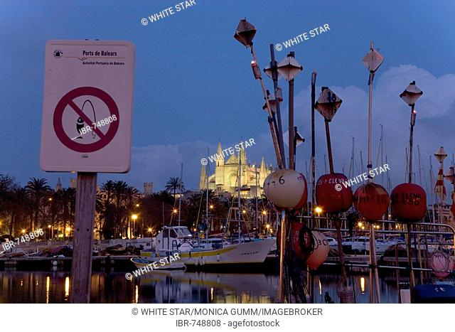 Fishing harbour at dusk and La Seu Cathedral (back), Palma, Majorca, Balearic Islands, Spain
