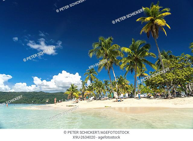 palm fringed sandy beach of Cayo Levantado, Samana, Dominican Republic, Carribean, America, .