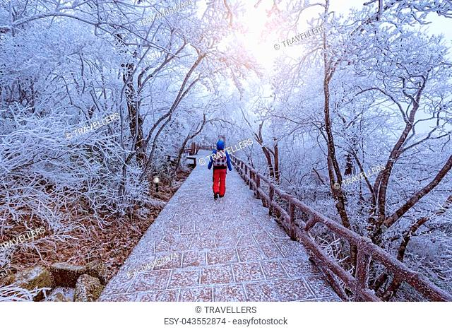Young woman on the walkway in Huangshan National park. Park located in Anhui province in China. It is a UNESCO World Heritage Site