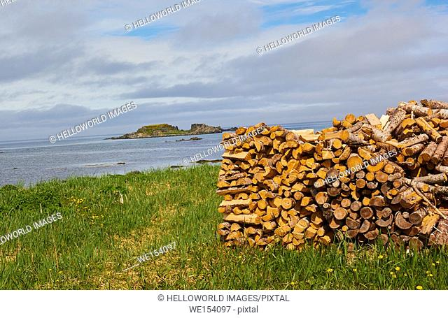 Stack of fresh logs firewood and the Atlantic Ocean, Newfoundland, Canada