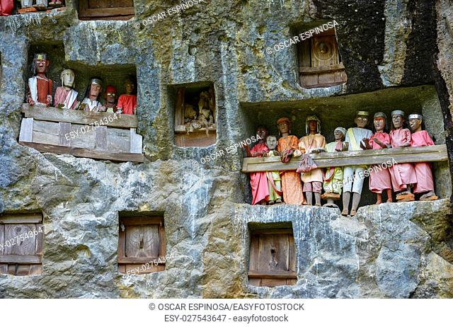 Galleries of tau-tau guard the graves. Lemo is cliffs old burial site in Tana Toraja, Sulawesi, Indonesia