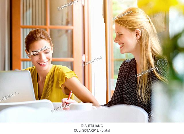 Two young women in cafe using laptop and writing notes