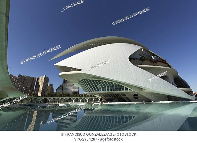 The Palau de les Arts Reina Sofia is the theater of the opera of Valencia and home of the Orchestra of the Valencian Community