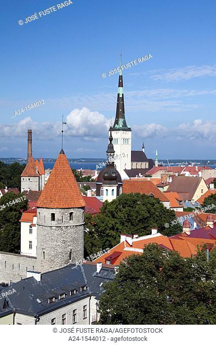 Estonia , Tallin City , City Walls and San Olav's Church, W H