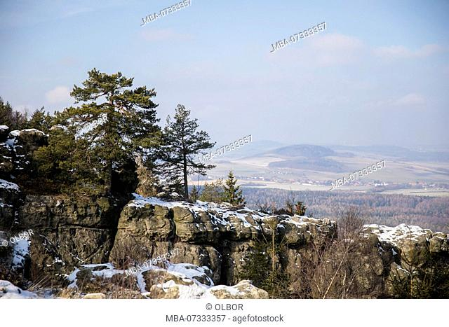 Germany, Saxony, Upper Lusatia, Zittau Mountains, Oybin, Mount Töpfer, landscape