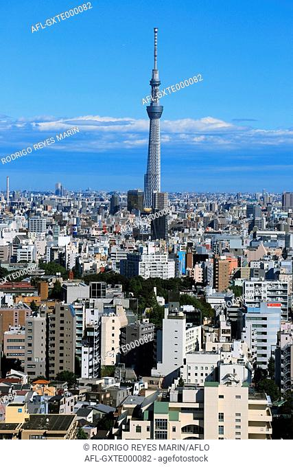 View of Tokyo Skytree and Tokyo cityscape