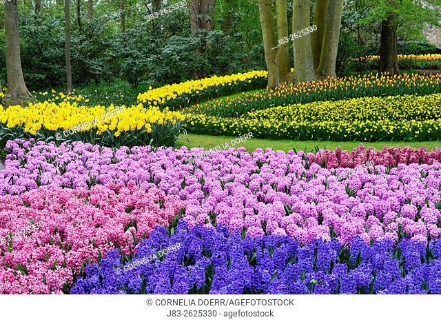 Garden Design in Spring, Keukenhof, Netherlands, Europe