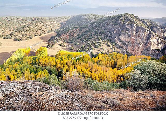 Autumn at the Dulce gorge in Aragosa. Guadalajara. Castilla la Mancha. Spain. Europe