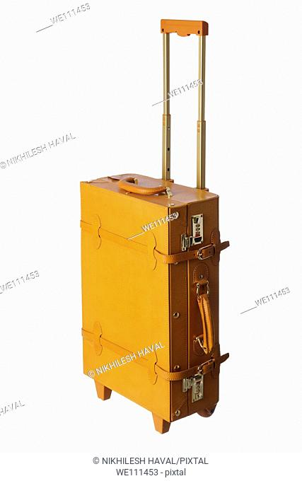 Rolling Trolley Leather briefcase