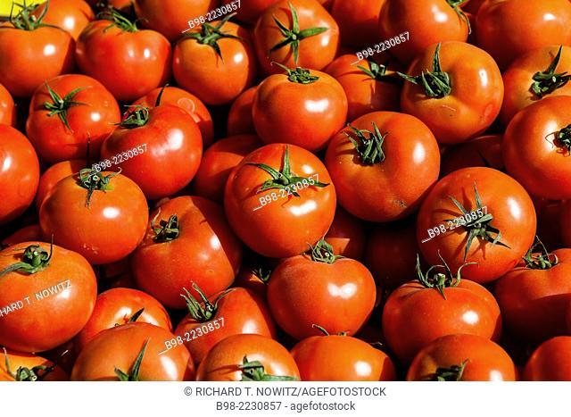 Fresh red tomatoes for sale in Tel Aviv's Carmel Market