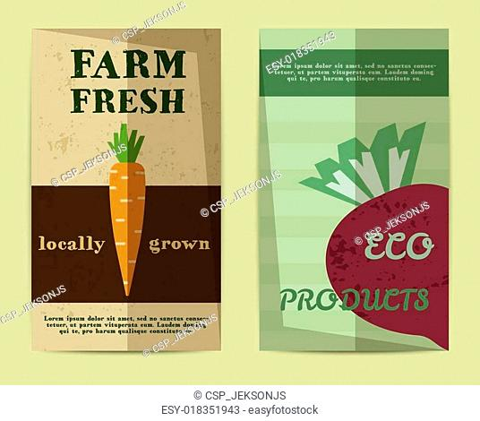 Set of Stylish Farm Fresh flyer, template or brochure design with carrot and beet. Mock up design. Best for natural shop, organic fairs