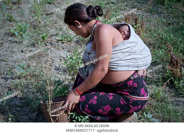 A woman from ethnic community works in the fields while carrying her child on her back Bandarban, Bangladesh April 11, 2009