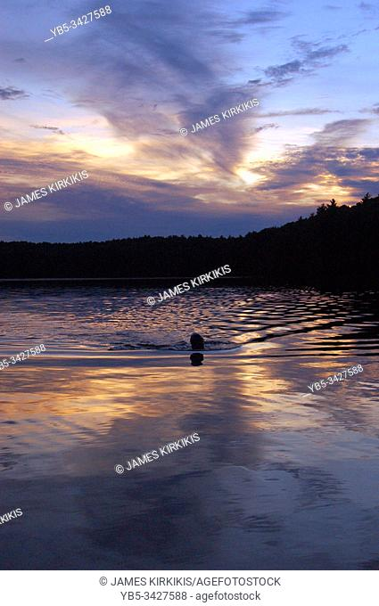 A swimmer emerges from the water of a lake at sunset