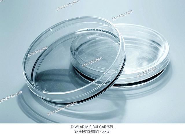 Empty petri dishes