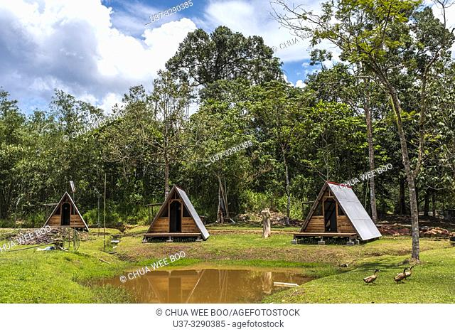 Sumiran Eco-Camp a multicultural rainforest mix eco-farm camp for all ages. Located in the Kuching City Batu Kawa Rantau Panjang, Sarawak, Malaysia