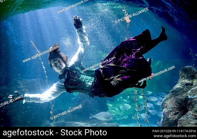 28 October 2020, Berlin: At Sea Life Berlin a diver in a witch costume dives together with fish in the Atlantic basin. The reason for this is the upcoming...
