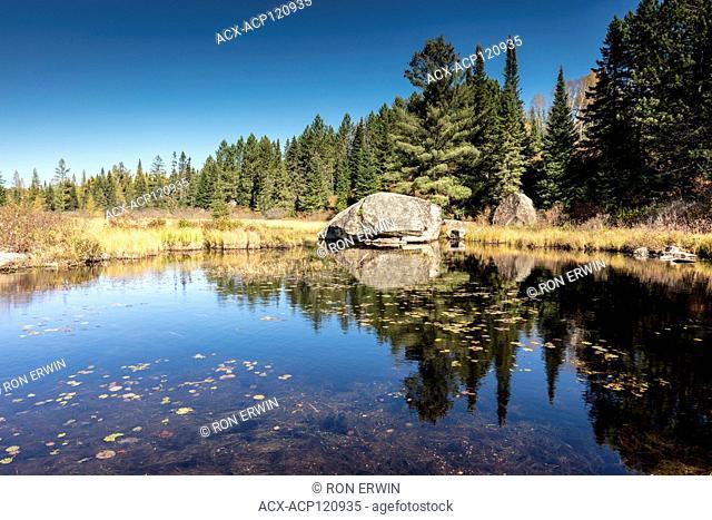 Rock in Algonquin Provincial Park, Ontario, Canada