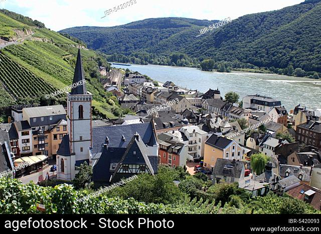 Assmannshausen, Rüdesheim, Upper Middle Rhine Valley, Rhine, Hesse, Germany, Europe